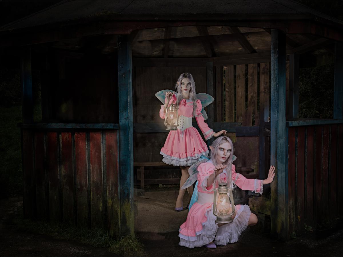 Fairy Lantern SistersLawrence Homewood