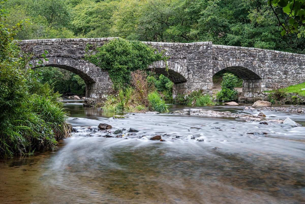 Griffin, Chris_Fingle Bridge, River Teign_1