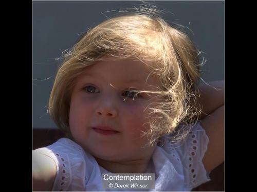 ContemplationDerek Winsor