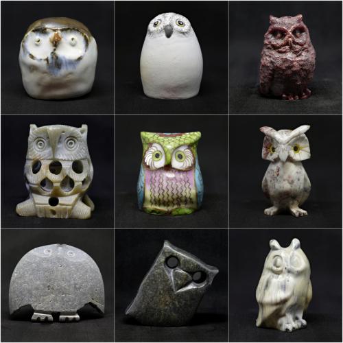Minature Owl CollectionDerek Winsor